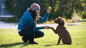 Personal Obedience training