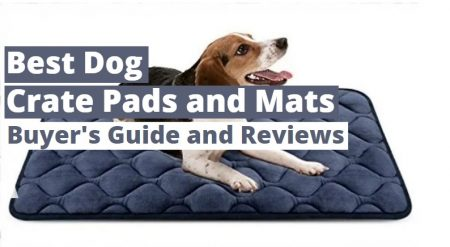 Best Dog Crate Pads and Mats in 2021 – ( Buying Guide )